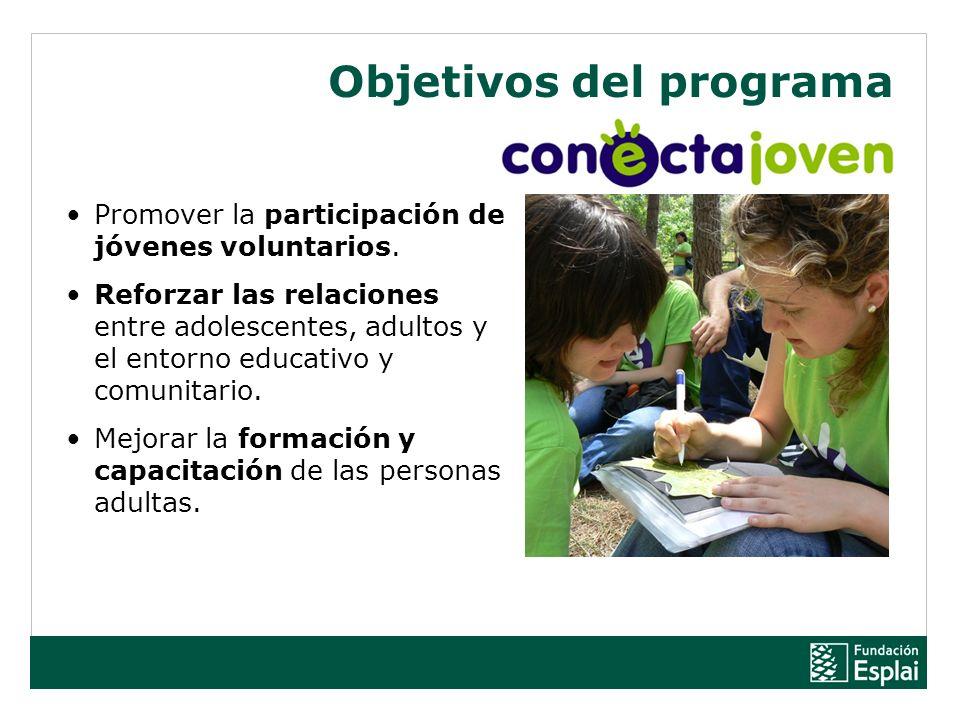 Promover la participación de jóvenes voluntarios. Reforzar las relaciones entre adolescentes, adultos y el entorno educativo y comunitario. Mejorar la
