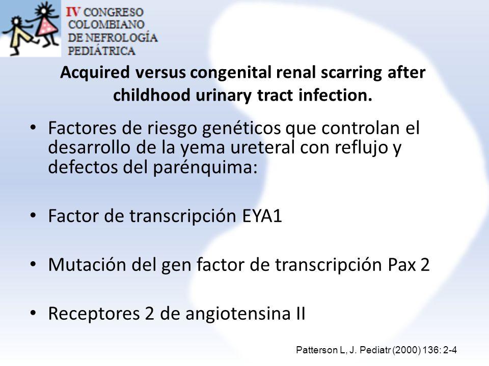 Incidence of Post-Pyelonephritic Renal Scarring: A Meta-Analysis of the Dimercapto-Succinic Acid Literature Factores genéticos y riesgo de Cicatrices renales Interleuquina 8 Polimorfismo CXCR-1 Enzima convertidora de angiotensina Inserción de ace/ID (polimorfismo genético) – Disfunción vesical – Uropatía congénita con y sin RVU Factor de necrosis tumoral alpha polimorfismo (RVU) Pediatric Urology (2009) 181: 290-298 Pediatr Nephrol (2005) 20:1116–1119.