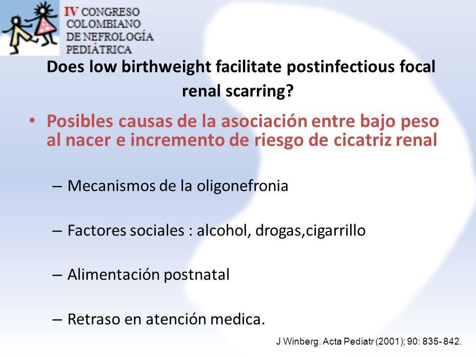 Does low birthweight facilitate postinfectious focal renal scarring? Posibles causas de la asociación entre bajo peso al nacer e incremento de riesgo