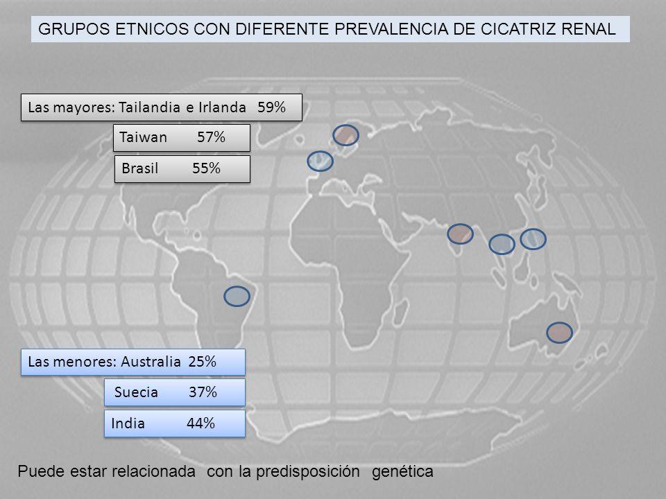 GRUPOS ETNICOS CON DIFERENTE PREVALENCIA DE CICATRIZ RENAL Las mayores: Tailandia e Irlanda 59% Taiwan 57% Brasil 55% Las menores: Australia 25% Sueci