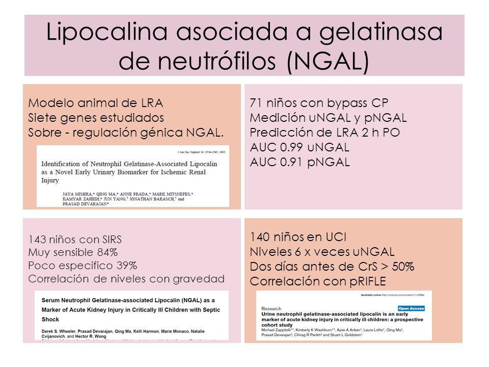 Lipocalina asociada a gelatinasa de neutrófilos (NGAL) Modelo animal de LRA Siete genes estudiados Sobre - regulación génica NGAL. 140 niños en UCI Ni