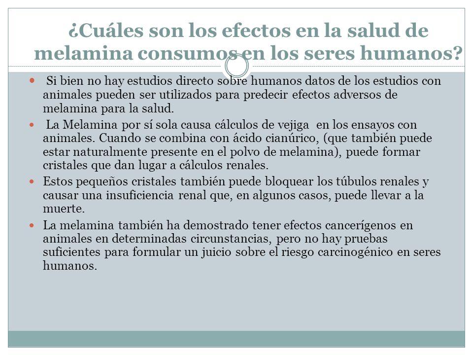 ¿ Cuáles son los efectos en la salud de melamina consumos en los seres humanos? Si bien no hay estudios directo sobre humanos datos de los estudios co