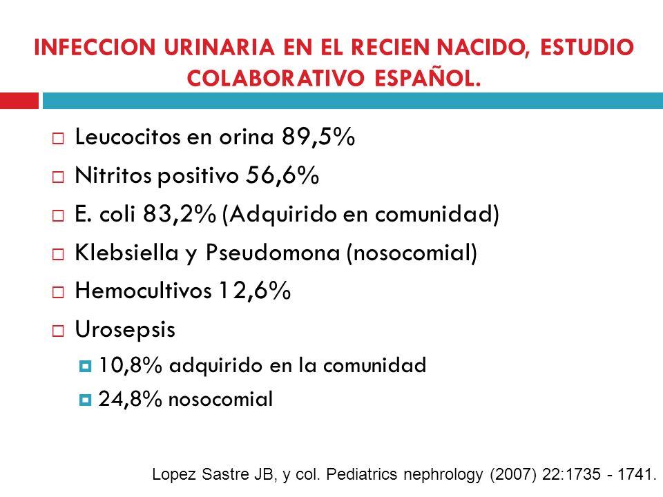INFECCION URINARIA EN EL RECIEN NACIDO, ESTUDIO COLABORATIVO ESPAÑOL. Leucocitos en orina 89,5% Nitritos positivo 56,6% E. coli 83,2% (Adquirido en co