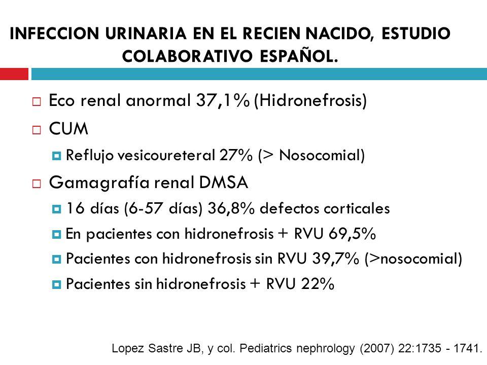 INFECCION URINARIA EN EL RECIEN NACIDO, ESTUDIO COLABORATIVO ESPAÑOL. Eco renal anormal 37,1% (Hidronefrosis) CUM Reflujo vesicoureteral 27% (> Nosoco