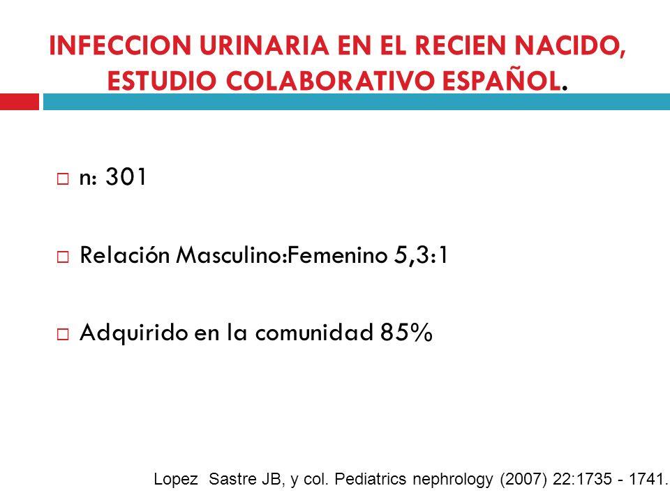 INFECCION URINARIA EN EL RECIEN NACIDO, ESTUDIO COLABORATIVO ESPAÑOL. n: 301 Relación Masculino:Femenino 5,3:1 Adquirido en la comunidad 85% Lopez Sas