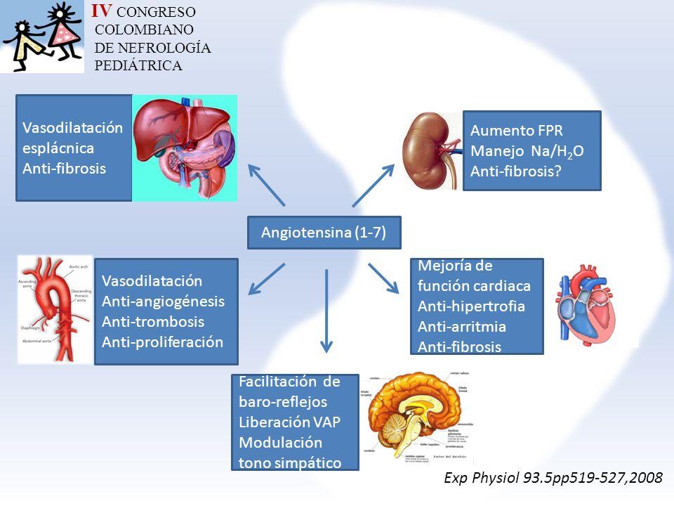 IV CONGRESO COLOMBIANO DE NEFROLOGÍA PEDIÁTRICA Angiotensina (1-7) Vasodilatación esplácnica Anti-fibrosis Vasodilatación Anti-angiogénesis Anti-tromb