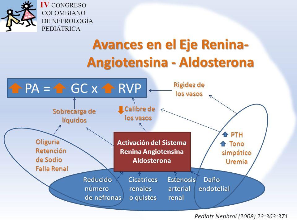 IV CONGRESO COLOMBIANO DE NEFROLOGÍA PEDIÁTRICA Avances en el Eje Renina- Angiotensina - Aldosterona PA = GC x RVP Reducido Cicatrices Estenosis Daño