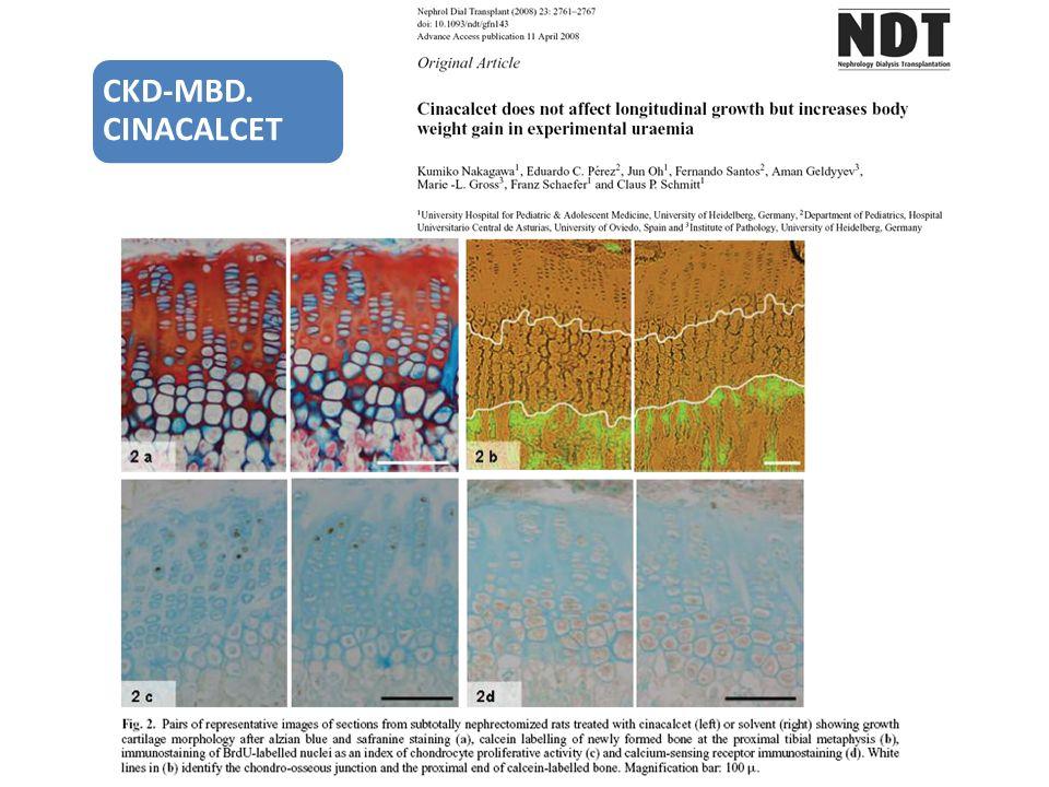 CKD-MBD. CINACALCET