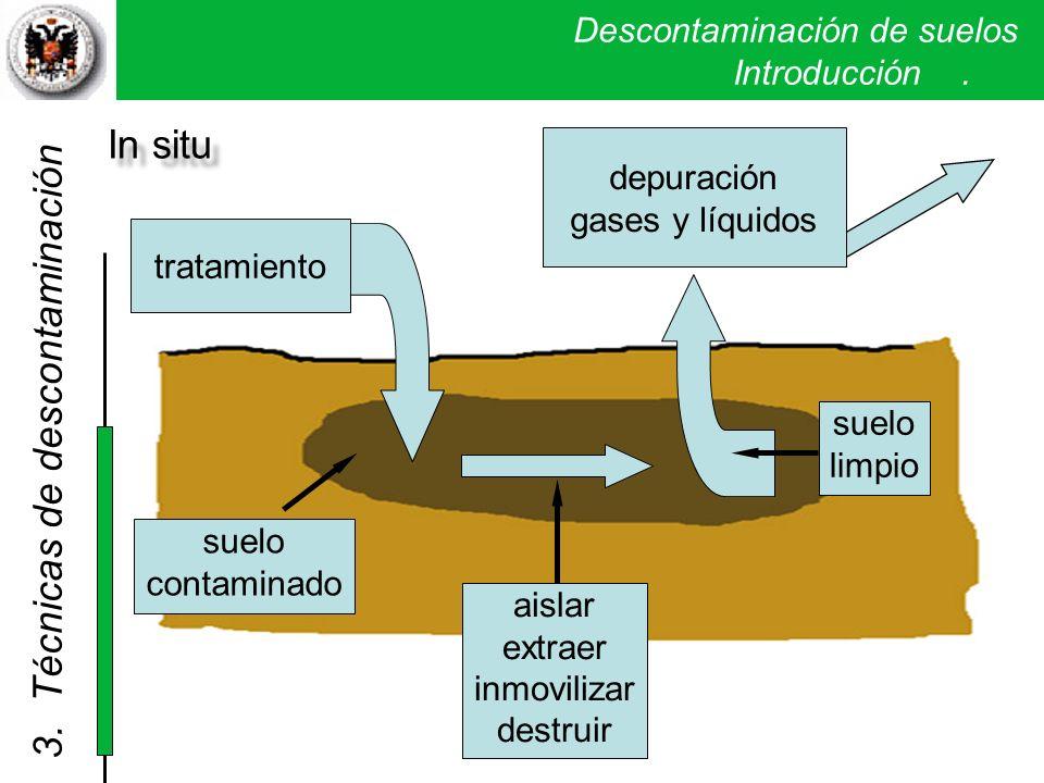 Descontaminación de suelos. Introducción. In situ tratamiento depuración gases y líquidos suelo contaminado aislar extraer inmovilizar destruir suelo