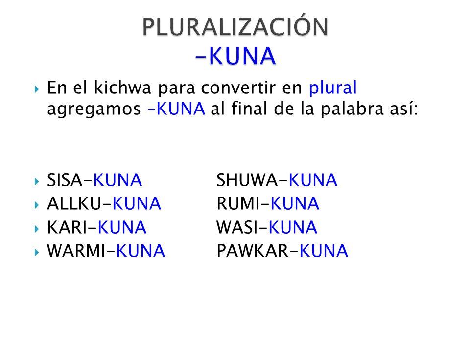 En el kichwa para convertir en plural agregamos –KUNA al final de la palabra así: SISA-KUNASHUWA-KUNA ALLKU-KUNARUMI-KUNA KARI-KUNAWASI-KUNA WARMI-KUN