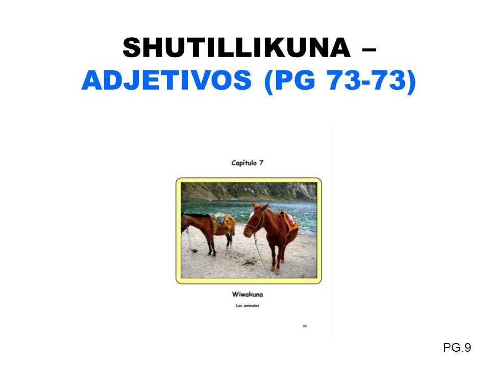SHUTILLIKUNA – ADJETIVOS (PG 73-73) PG.9