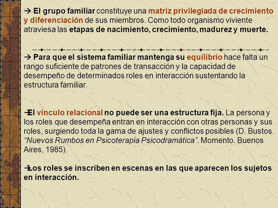 El grupo familiar constituye una matriz privilegiada de crecimiento y diferenciación de sus miembros. Como todo organismo viviente atraviesa las etapa