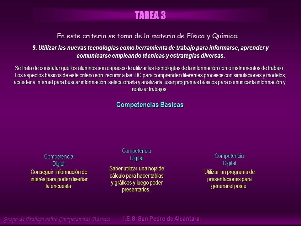 Grupo de Trabajo sobre Competencias Básicas I.E.S.
