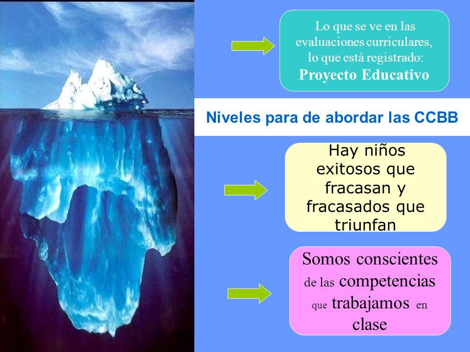 Lo que se ve en las evaluaciones curriculares, lo que está registrado: Proyecto Educativo Hay niños exitosos que fracasan y fracasados que triunfan So