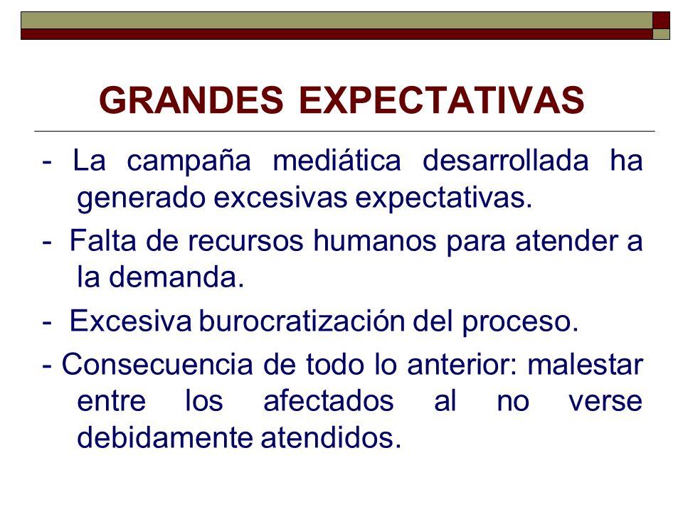 PERSPECTIVAS DE FUTURO - El Plan Gerontológico de Bizkaia (2006- 2011).
