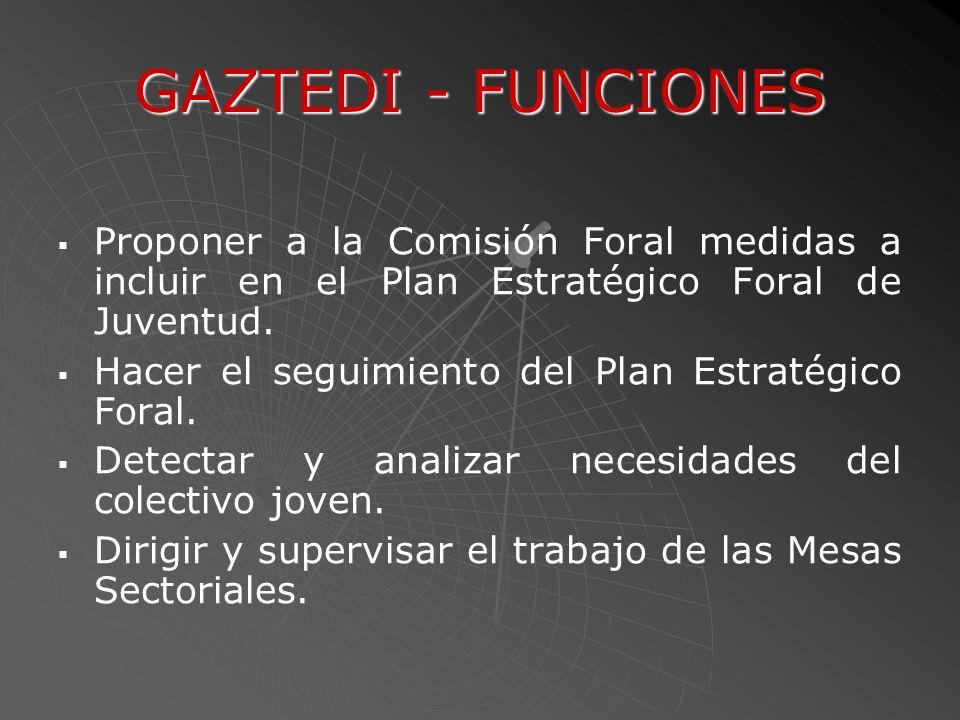 GAZTEDI - FUNCIONES Proponer a la Comisión Foral medidas a incluir en el Plan Estratégico Foral de Juventud. Hacer el seguimiento del Plan Estratégico