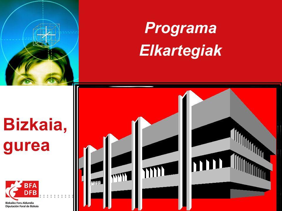 2 Programa Elkartegiak OBJETIVO ESTRATEGICO : Con este programa el Departamento de Innovación y Promoción Económica de la Diputación Foral de Bizkaia concreta y desarrolla la apuesta contenida en el eje estratégico correspondiente al apartado de las infraestructuras incrementando en 155 su oferta de módulos con la incorporación de los nuevos centros de empresas – elkartegiak de Boroa, Bolueta y Sondika que se ofrecen a las empresas de Bizkaia, todo ello con la colaboración de la sociedad pública foral Azpiegitura, S.A.U..