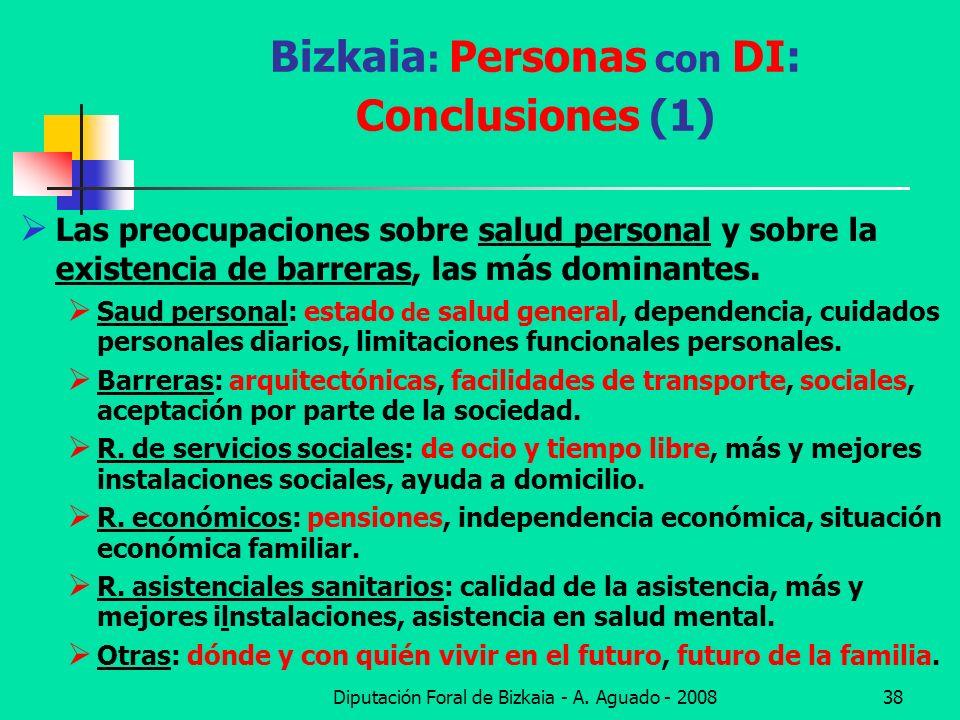 Diputación Foral de Bizkaia - A. Aguado - 200838 Bizkaia : Personas con DI: Conclusiones (1) Las preocupaciones sobre salud personal y sobre la existe