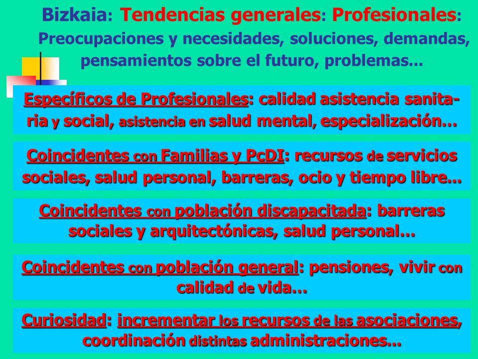 Diputación Foral de Bizkaia - A. Aguado - 200853 Bizkaia : Tendencias generales : Profesionales : Preocupaciones y necesidades, soluciones, demandas,