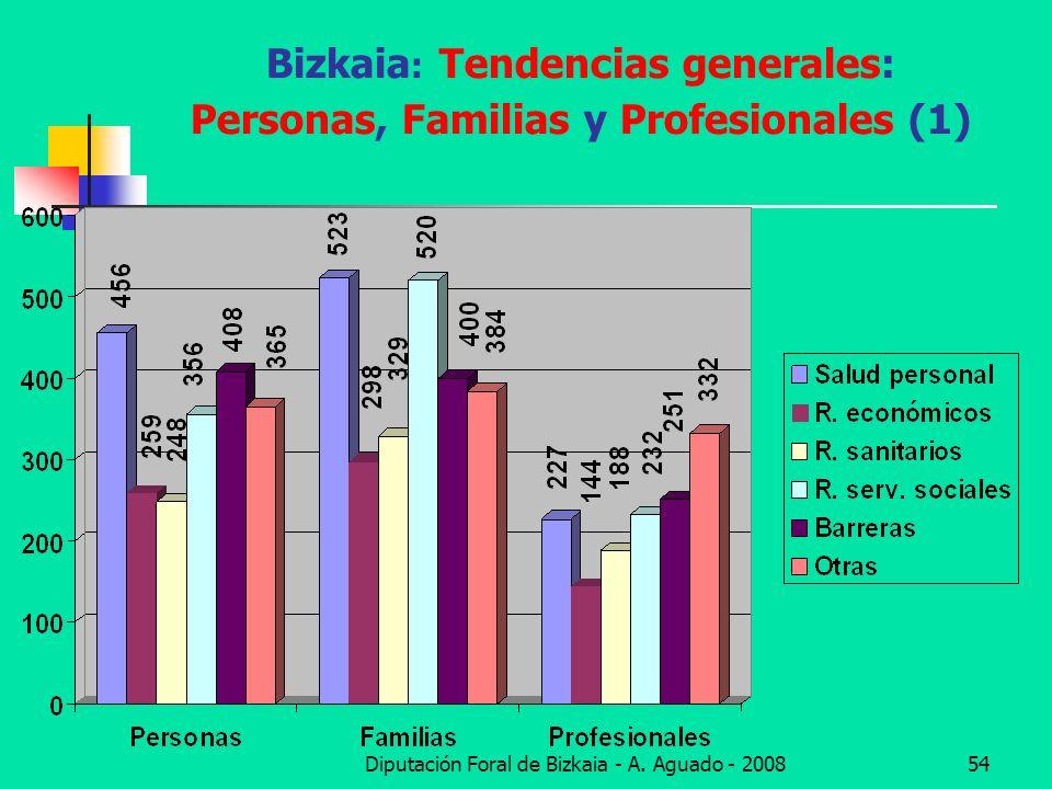 Diputación Foral de Bizkaia - A. Aguado - 200854 Bizkaia : Tendencias generales: Personas, Familias y Profesionales (1)