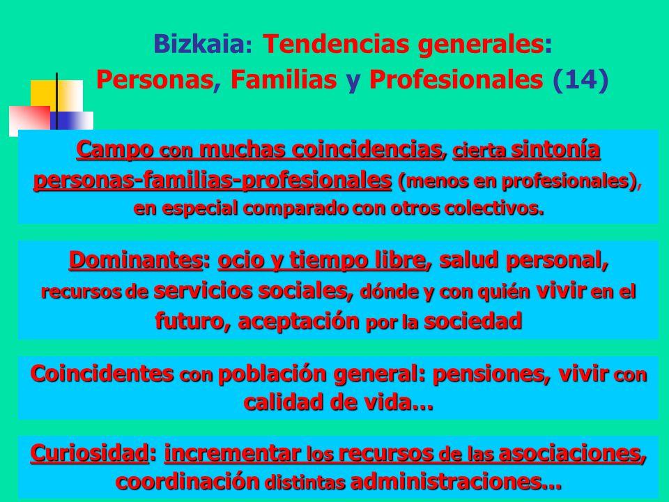 Diputación Foral de Bizkaia - A. Aguado - 200867 Bizkaia : Tendencias generales: Personas, Familias y Profesionales (14) Dominantes: ocio y tiempo lib