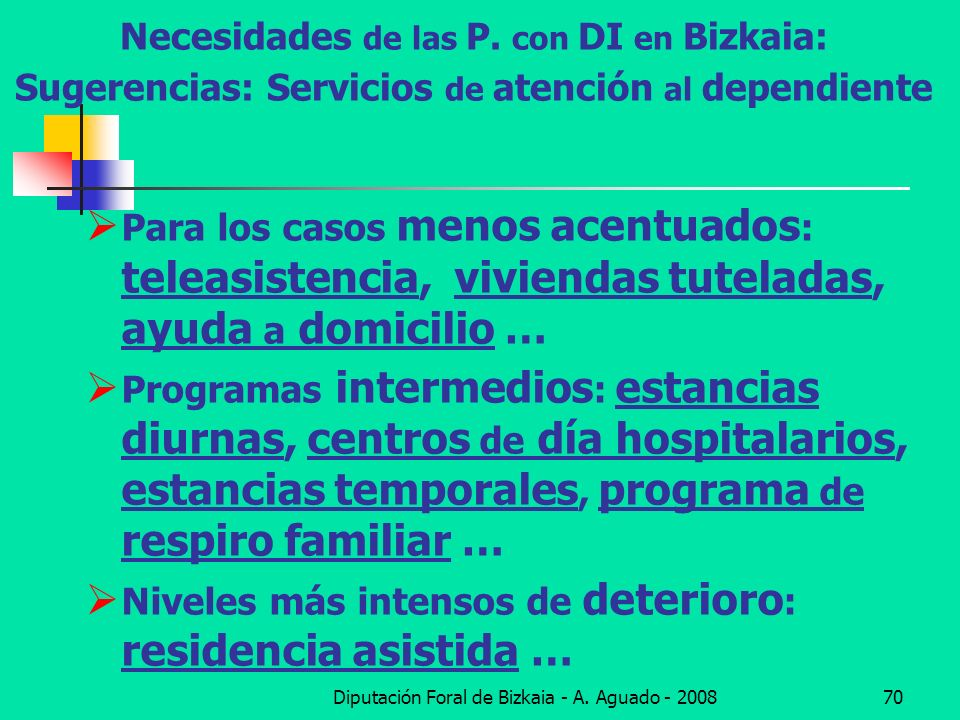 Diputación Foral de Bizkaia - A. Aguado - 200870 Necesidades de las P. con DI en Bizkaia: Sugerencias: Servicios de atención al dependiente Para los c