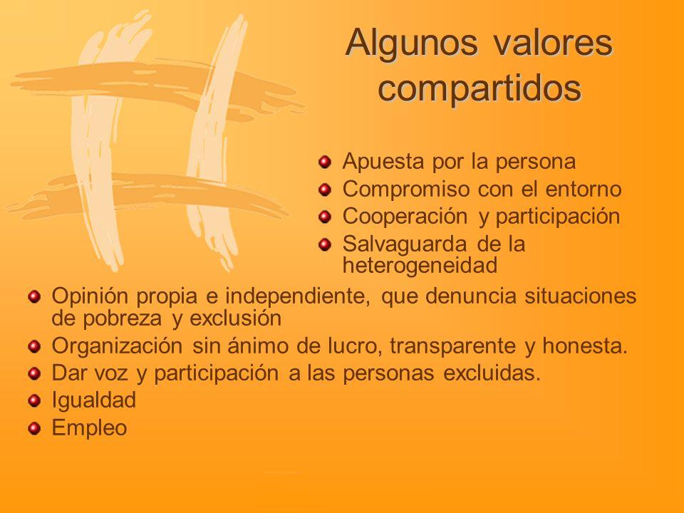 Potenciar la dimensión social de las entidades Especial atención a las nuevas necesidades sociales Creación de beneficio social evaluable.
