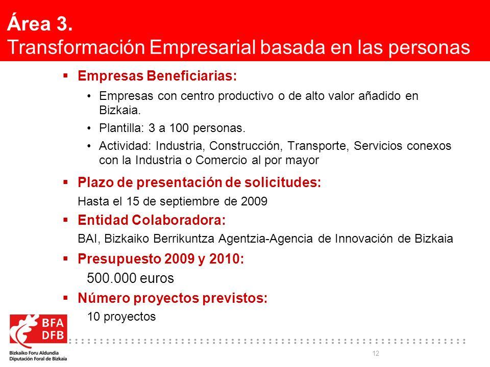 12 Área 3. Transformación Empresarial basada en las personas Empresas Beneficiarias: Empresas con centro productivo o de alto valor añadido en Bizkaia