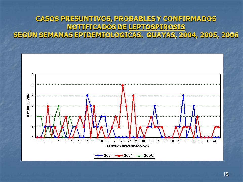 15 CASOS PRESUNTIVOS, PROBABLES Y CONFIRMADOS NOTIFICADOS DE LEPTOSPIROSIS SEGÚN SEMANAS EPIDEMIOLOGICAS. GUAYAS, 2004, 2005, 2006
