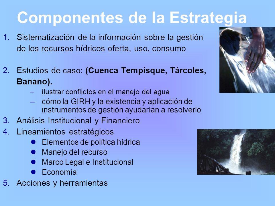 Componentes de la Estrategia 1.Sistematización de la información sobre la gestión de los recursos hídricos oferta, uso, consumo 2.Estudios de caso: (C