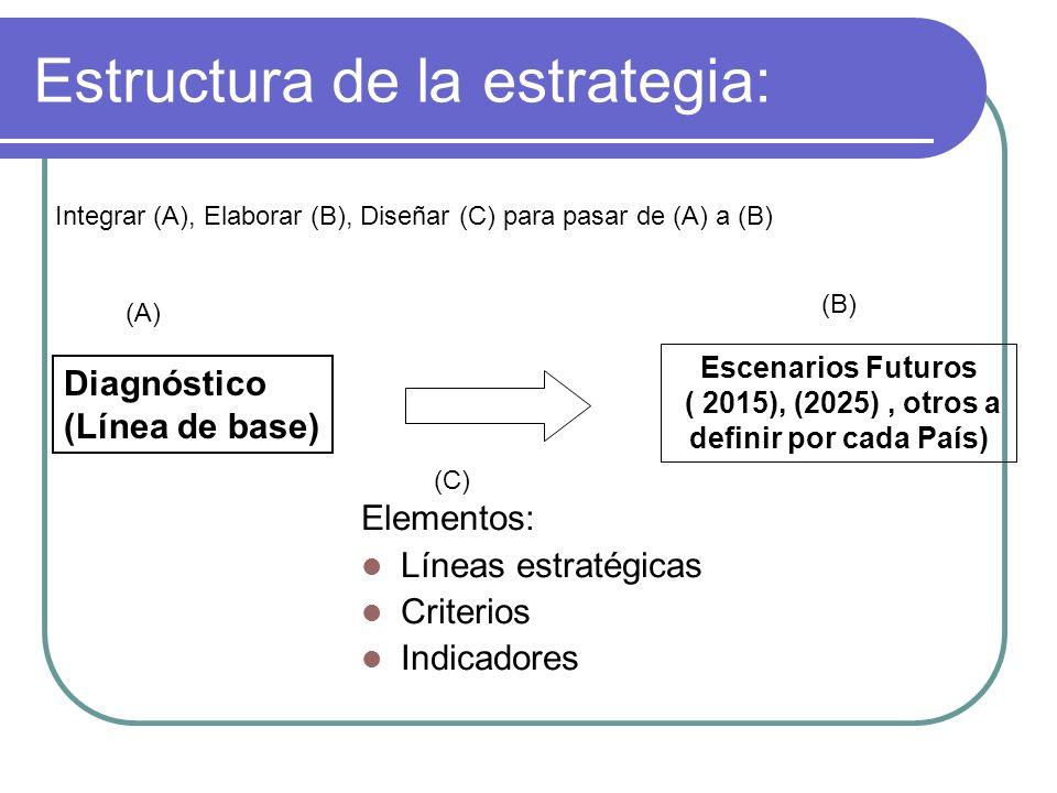 Estructura de la estrategia: Diagnóstico (Línea de base) Escenarios Futuros ( 2015), (2025), otros a definir por cada País) Elementos: Líneas estratég