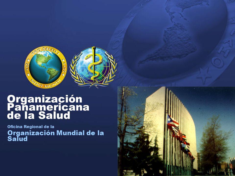 2 Organización Panamericana de la Salud 2004 Organización Panamericana de la Salud Oficina Regional de la Organización Mundial de la Salud