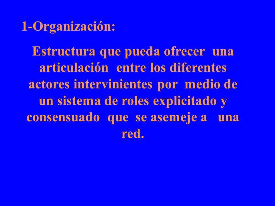 1-Organización: Estructura que pueda ofrecer una articulación entre los diferentes actores intervinientes por medio de un sistema de roles explicitado