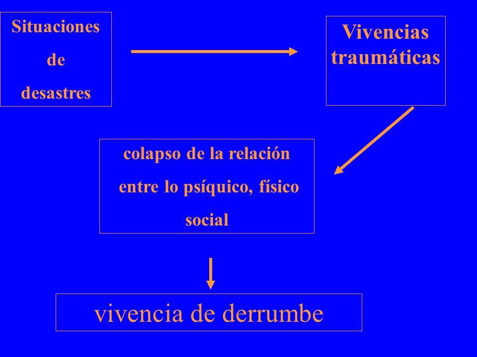 vivencia de derrumbe Situaciones de desastres colapso de la relación entre lo psíquico, físico social Vivencias traumáticas