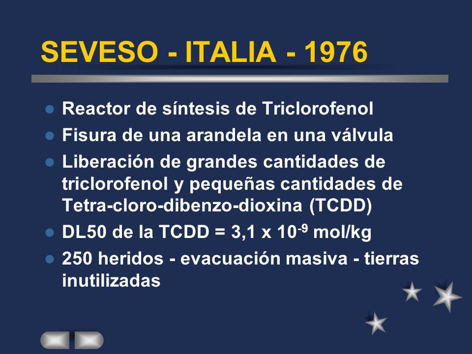 SAN CARLOS DE LA RAPITA /ESPAÑA - 1978 Contenedor de Propileno cargado con 23,5 toneladas en lugar de las 19 permitidas.