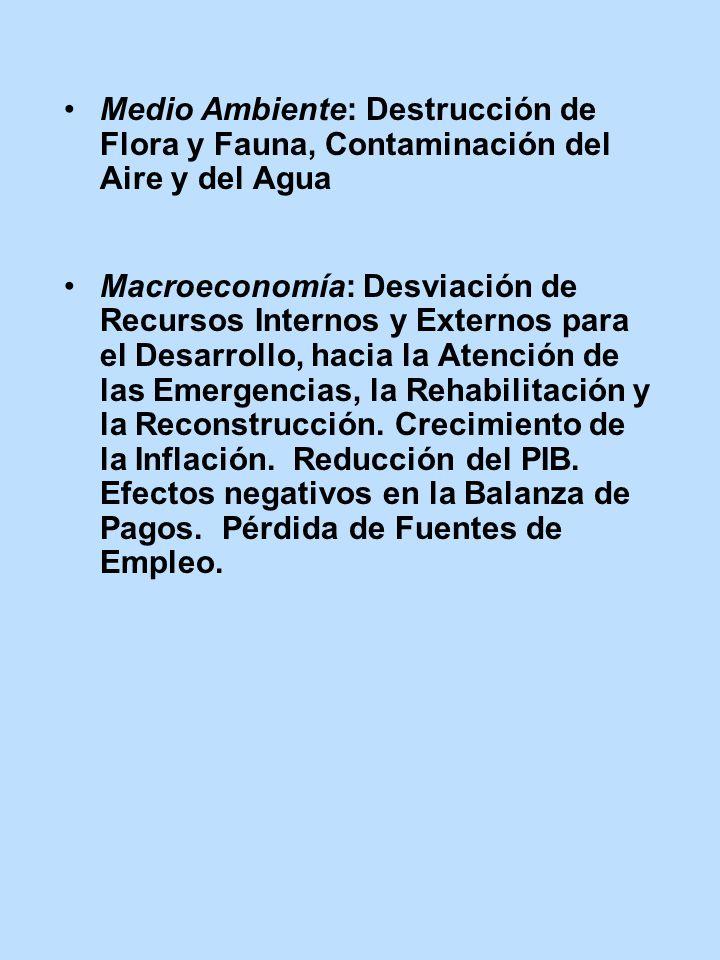 Medio Ambiente: Destrucción de Flora y Fauna, Contaminación del Aire y del Agua Macroeconomía: Desviación de Recursos Internos y Externos para el Desa