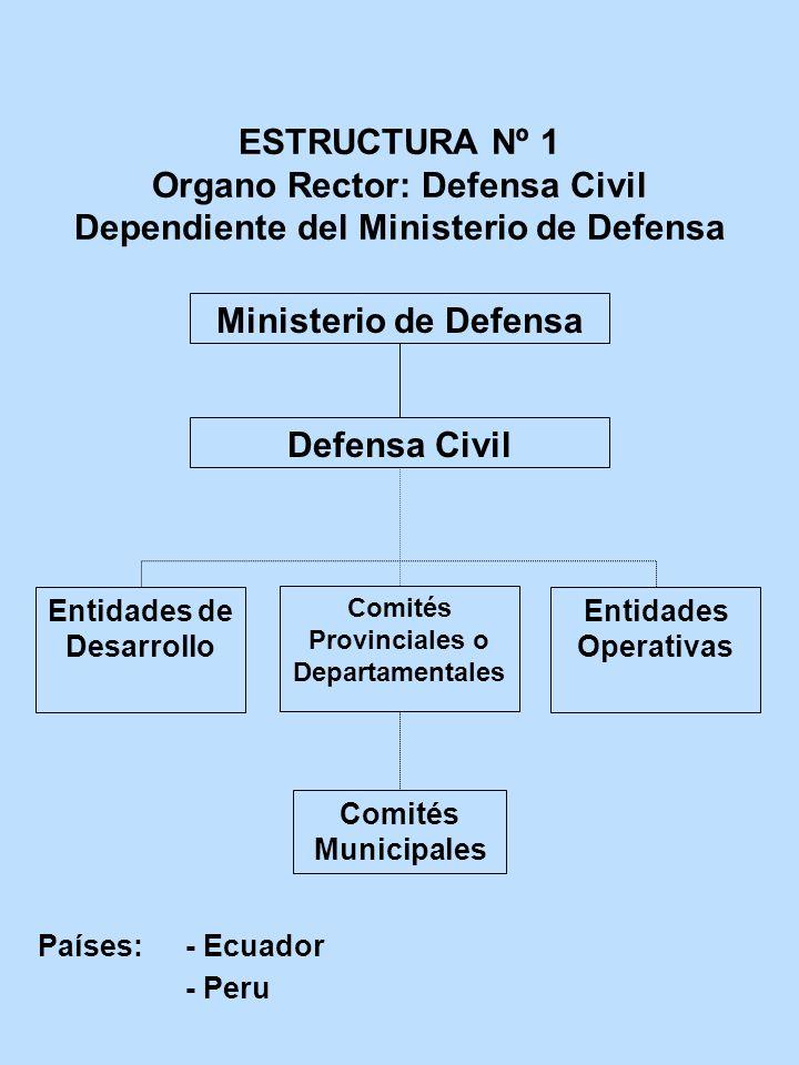 ESTRUCTURA Nº 1 Organo Rector: Defensa Civil Dependiente del Ministerio de Defensa Ministerio de Defensa Defensa Civil Entidades de Desarrollo Comités
