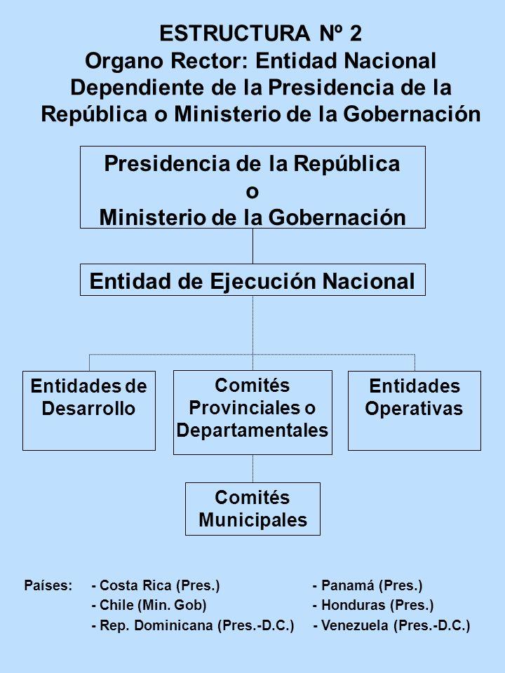 ESTRUCTURA Nº 2 Organo Rector: Entidad Nacional Dependiente de la Presidencia de la República o Ministerio de la Gobernación Presidencia de la Repúbli