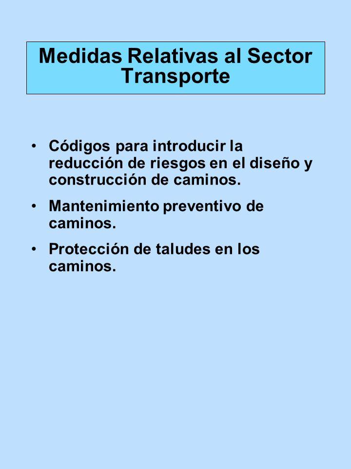 Códigos para introducir la reducción de riesgos en el diseño y construcción de caminos. Mantenimiento preventivo de caminos. Protección de taludes en