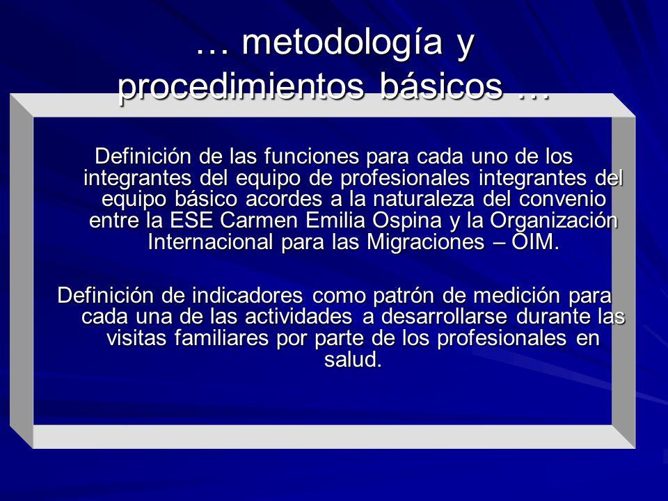 Definición de las funciones para cada uno de los integrantes del equipo de profesionales integrantes del equipo básico acordes a la naturaleza del con
