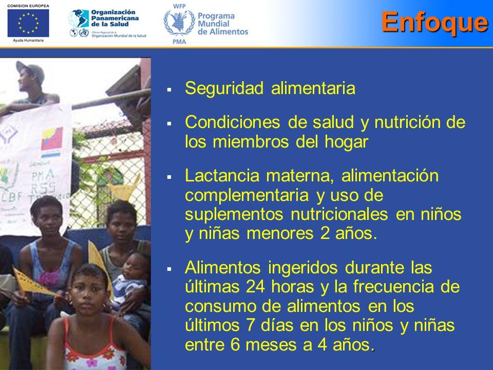 Enfoque Seguridad alimentaria Condiciones de salud y nutrición de los miembros del hogar Lactancia materna, alimentación complementaria y uso de suple