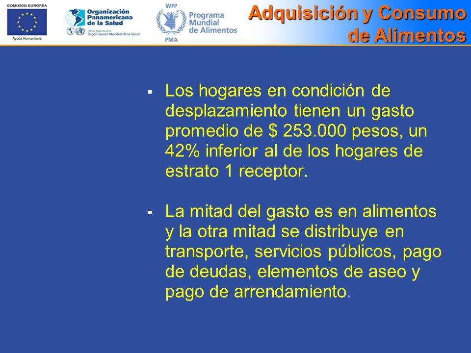 Los hogares en condición de desplazamiento tienen un gasto promedio de $ 253.000 pesos, un 42% inferior al de los hogares de estrato 1 receptor. La mi