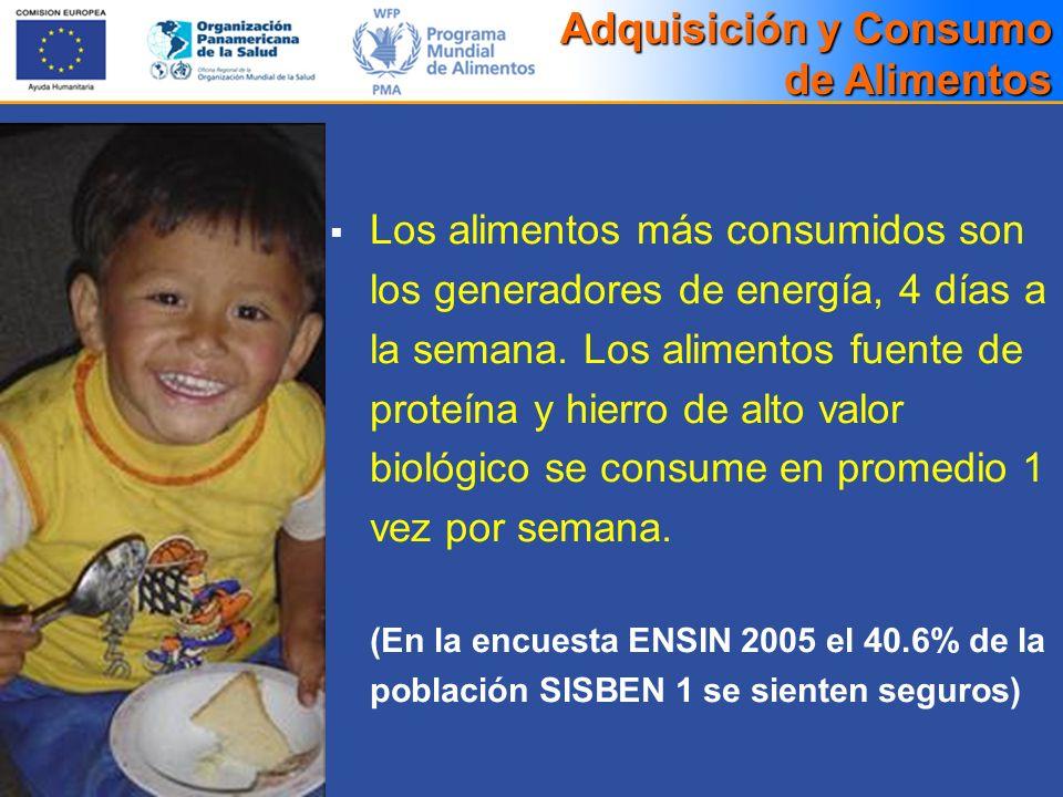 Los alimentos más consumidos son los generadores de energía, 4 días a la semana. Los alimentos fuente de proteína y hierro de alto valor biológico se