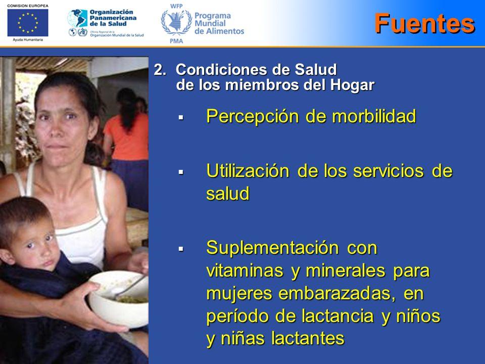 Percepción de morbilidad Percepción de morbilidad Utilización de los servicios de salud Utilización de los servicios de salud Suplementación con vitam