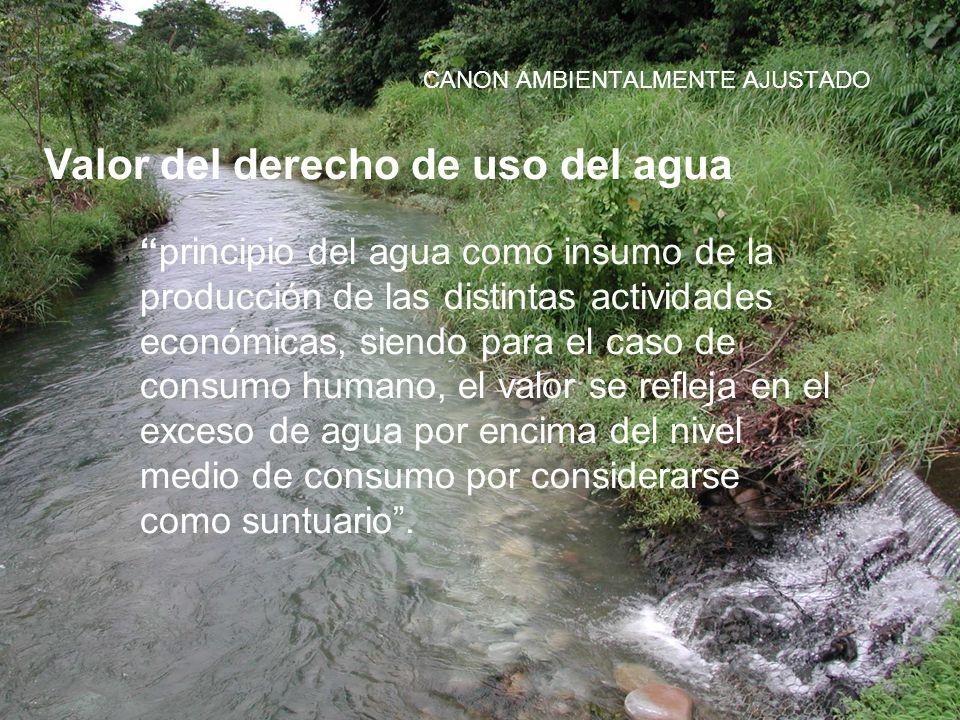 CANON AMBIENTALMENTE AJUSTADO Valor del derecho de uso del agua principio del agua como insumo de la producción de las distintas actividades económica