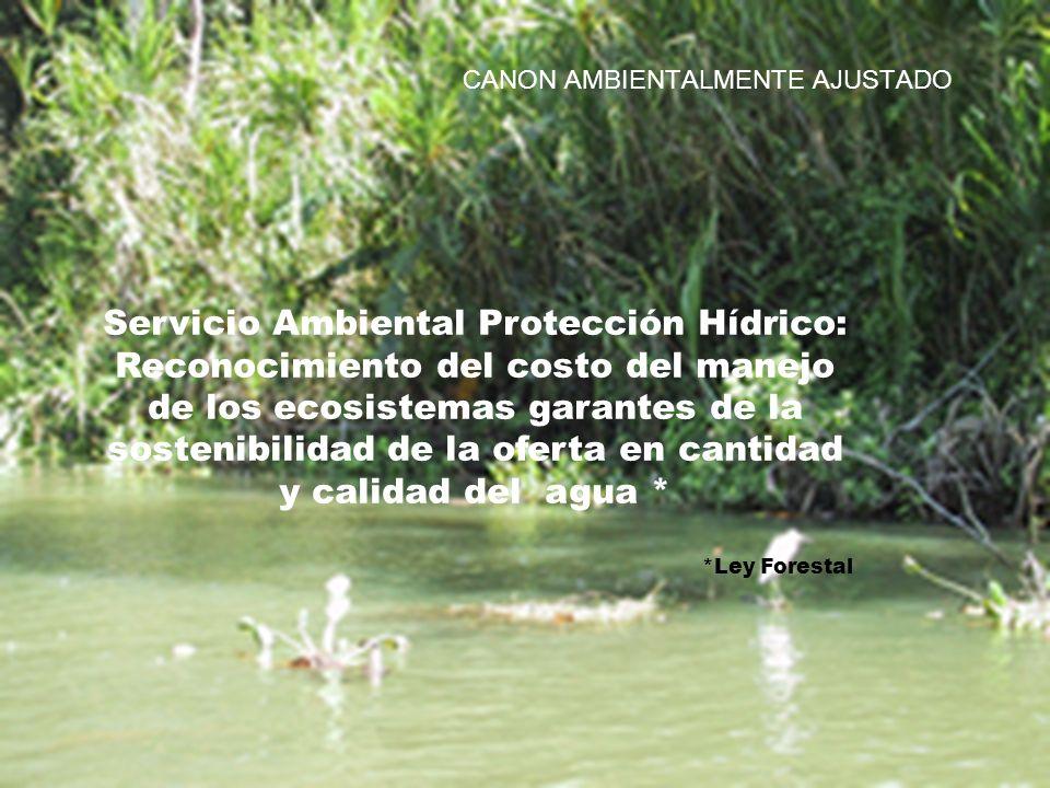 Servicio Ambiental Protección Hídrico: Reconocimiento del costo del manejo de los ecosistemas garantes de la sostenibilidad de la oferta en cantidad y