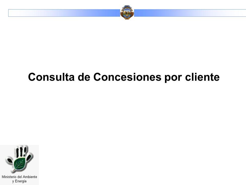 Consulta de Concesiones por cliente