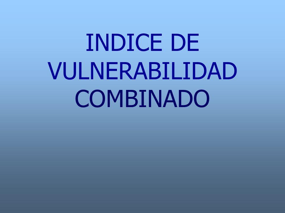 INDICE DE VULNERABILIDAD COMBINADO