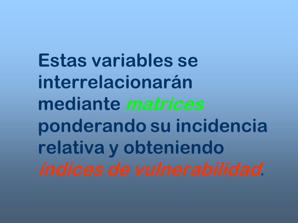 Forma de Presentación n Informes conteniendo la definición de cada una de las variables, criterios de realización de los índices, matrices e interpretación.