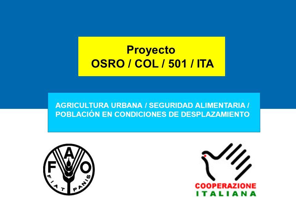 AGRICULTURA URBANA HUERTAS COMUNITARIAS Y FAMILIARES CON FAMILIAS DESPLAZADAS PARA LA SEGURIDAD ALIMENTARIA BOGOTÁ - MEDELLIN OSRO/COL/501/ITA